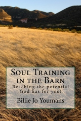 Soul Training cover